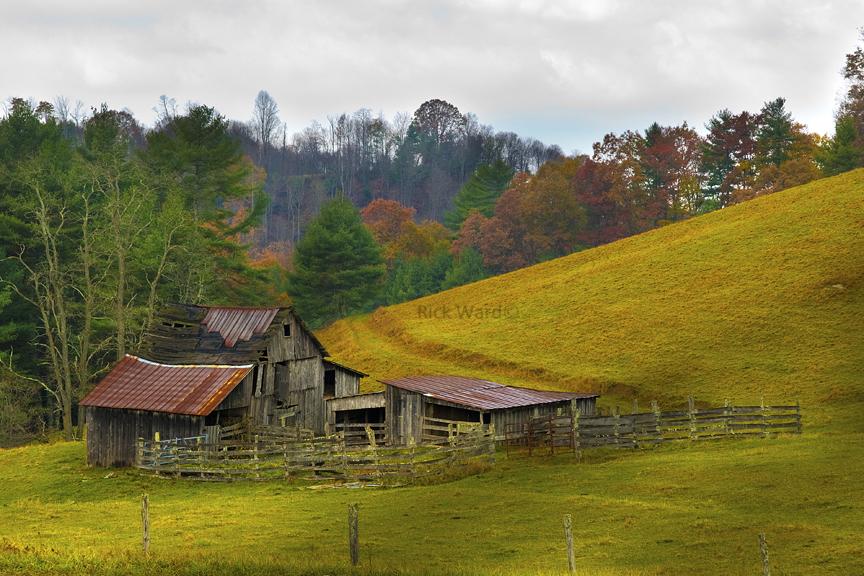 Barn in Floyd Co. 16 X 32 in.