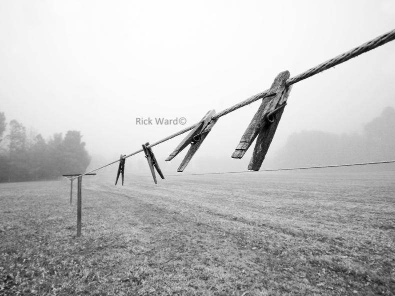 Clothesline in Fog 18 X 24 in.