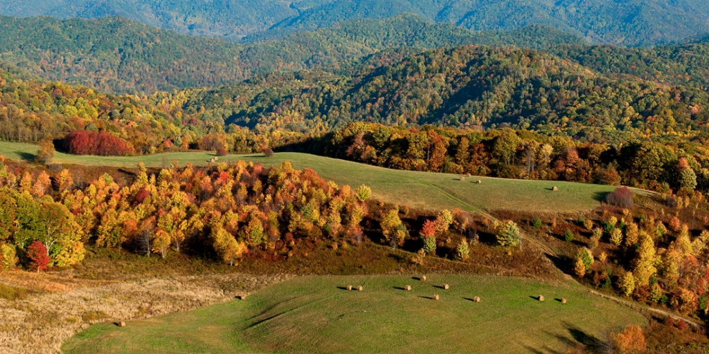 Max Patch 16X32 in.